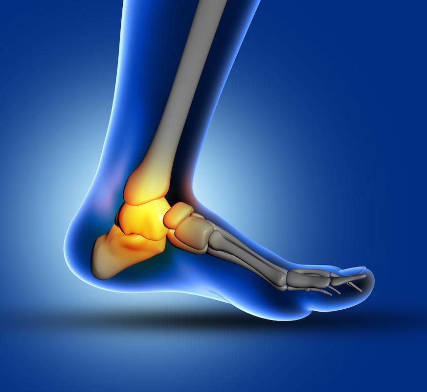 3D medical image of ankle bone